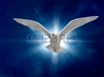 4579108-holy-spirit-bird-on-royal-blue-starburst-background
