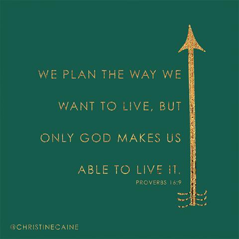 plan-live