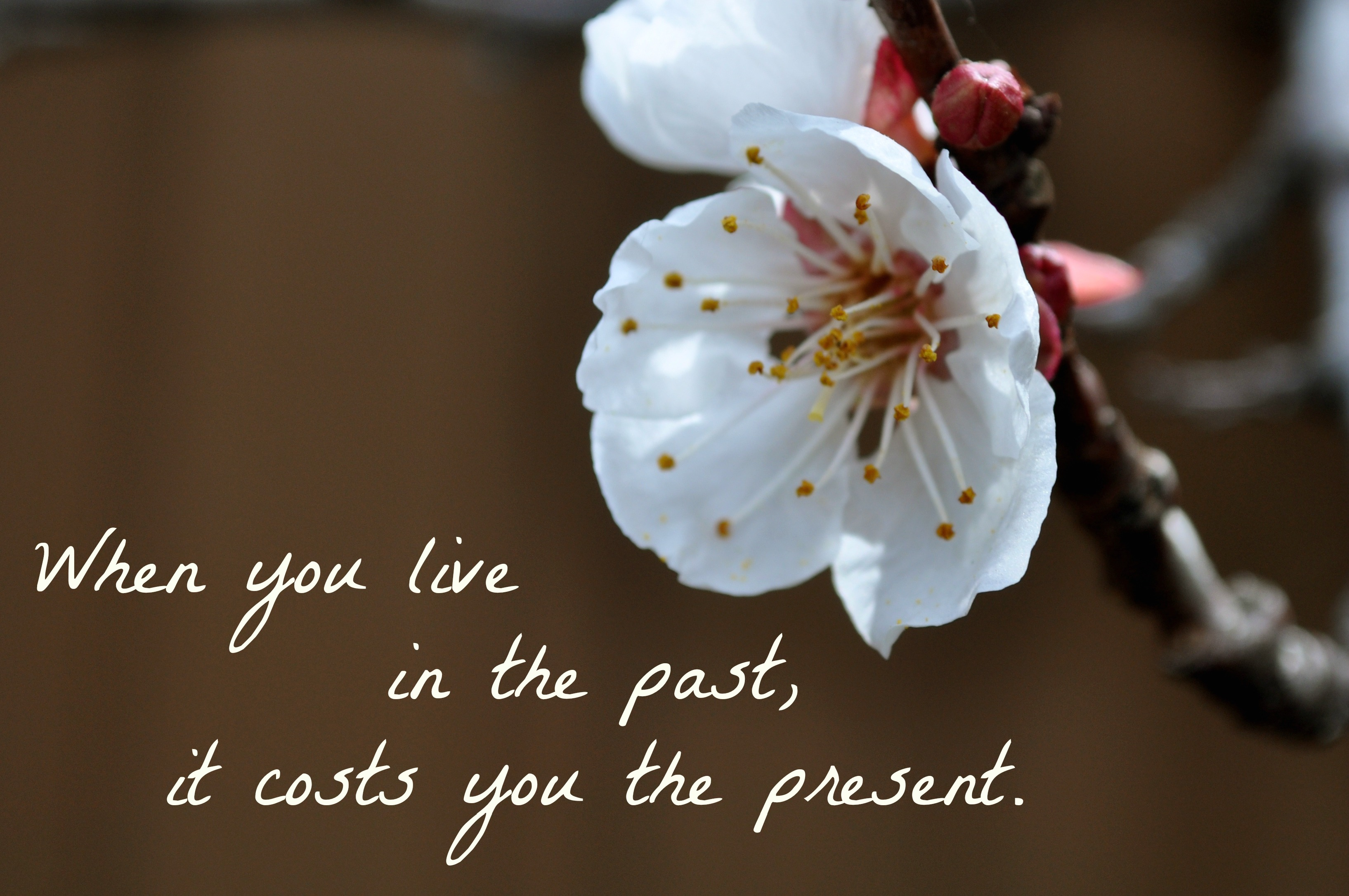 when-you-live-in-the-past-it-cost-you-the-present-simple-sojourns