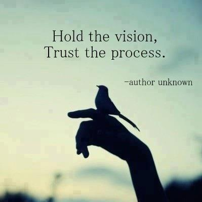 holdvision