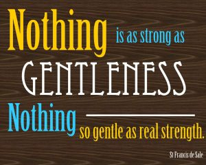nothing-as-strong-as-gentleness