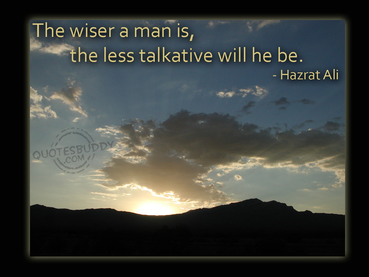 wiser-quotes-4