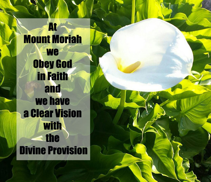 at-mount-moriah-we-obey-god-in-faith-and-we-have-a-clear-vision-with-the-divine-provision