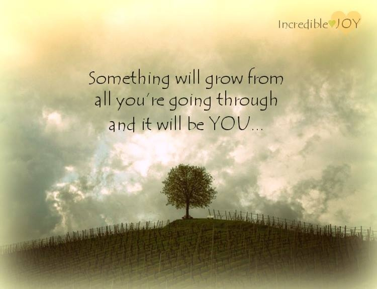 something-will-grow-from-all-you-are-going-through-and-it-will-be-you