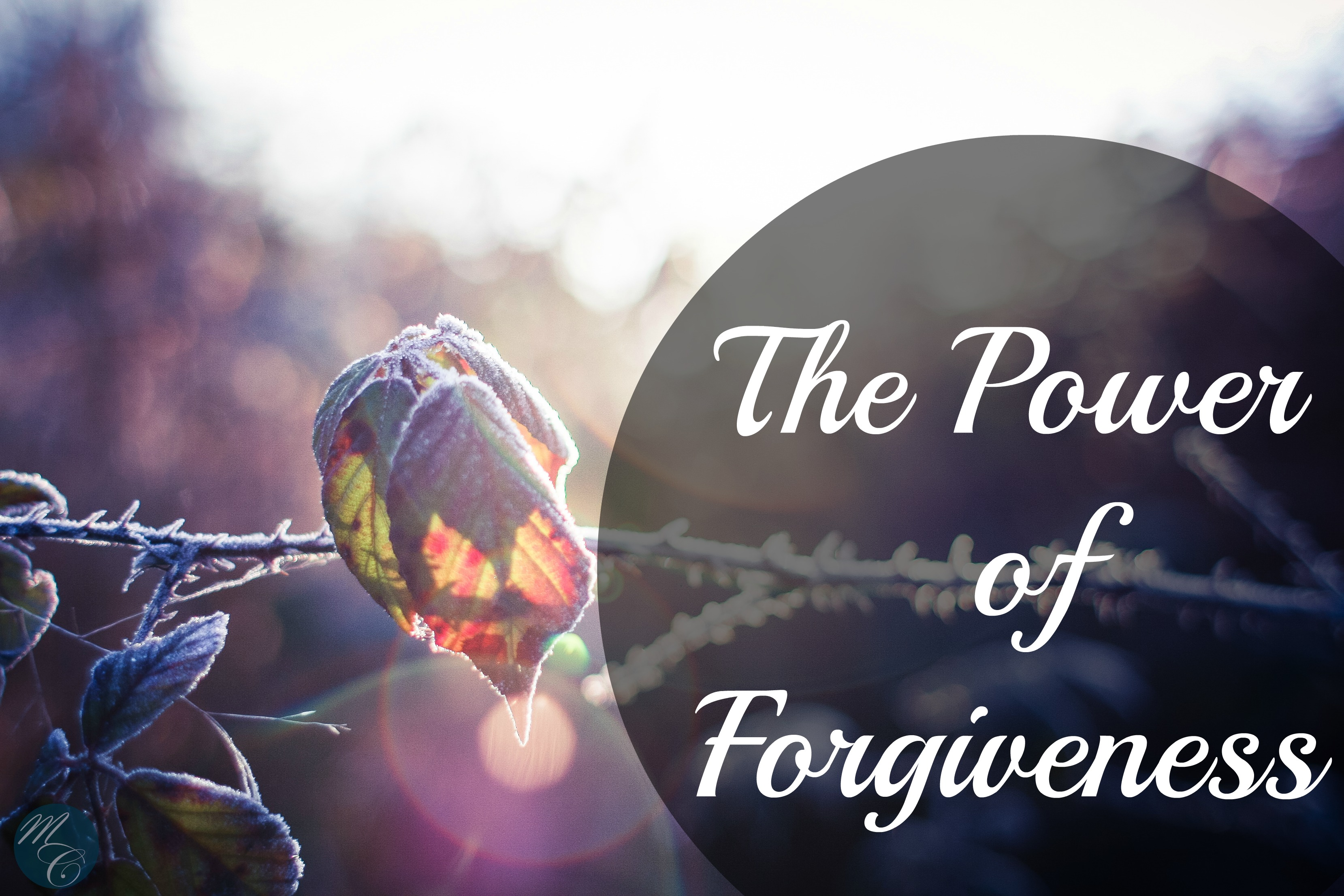 the-power-of-forgiving