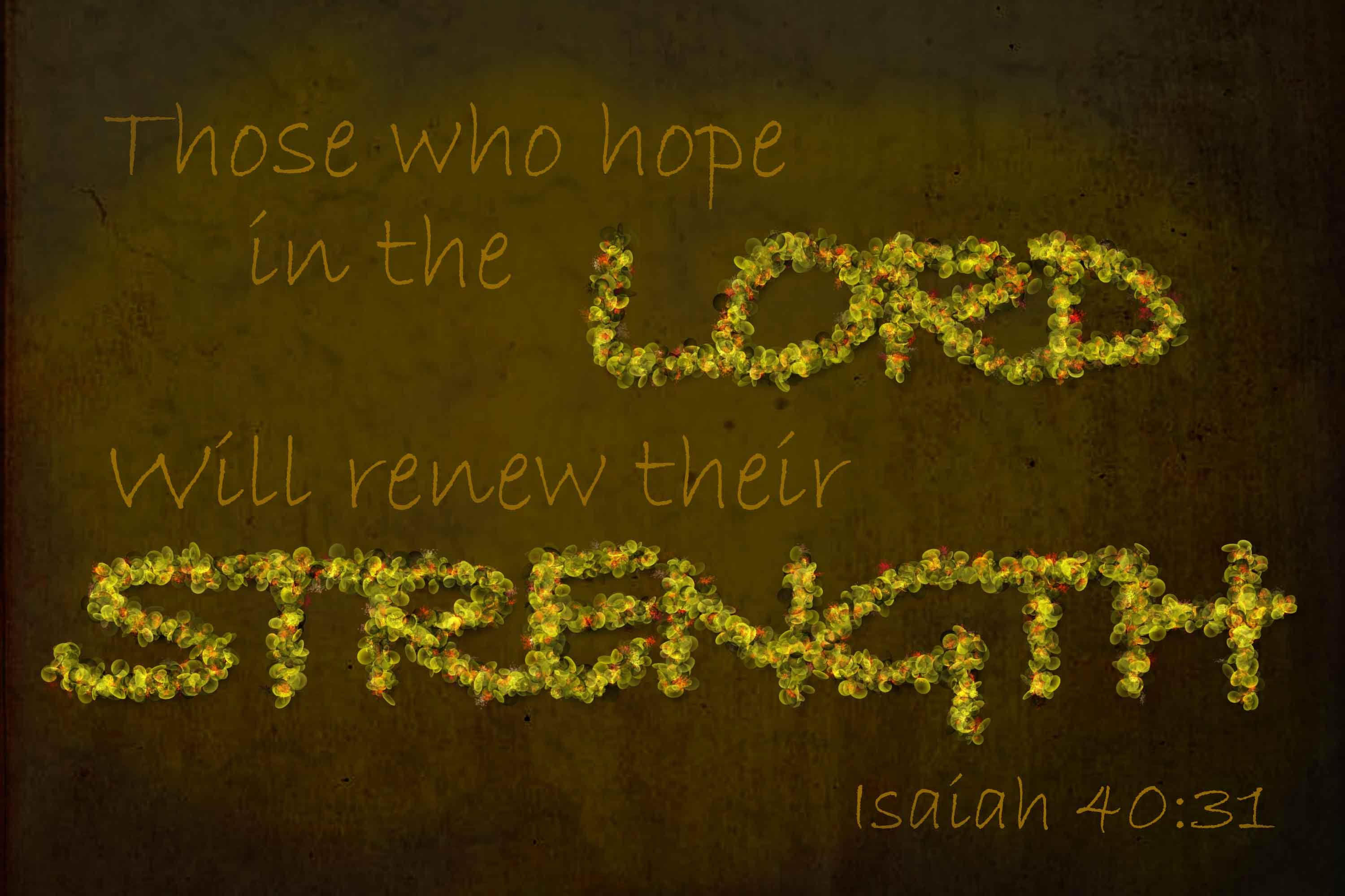 those-who-hope-in-the-lord-is-40-31