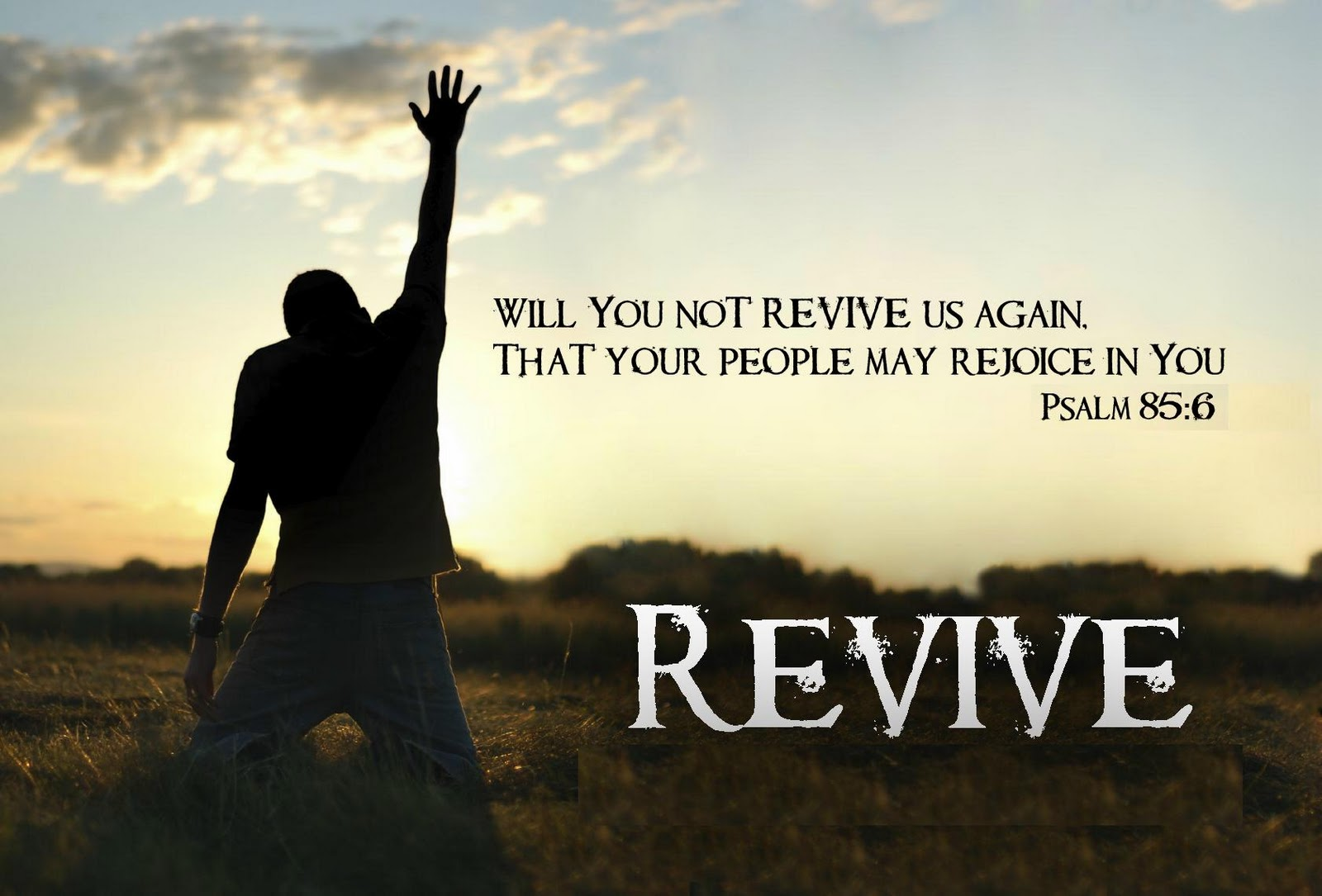 revivalhgf
