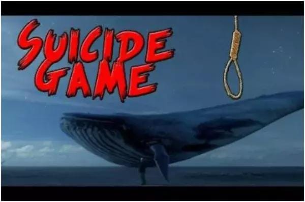 Beware With Blue Whale Challenge!